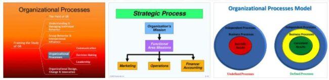 Process Organization